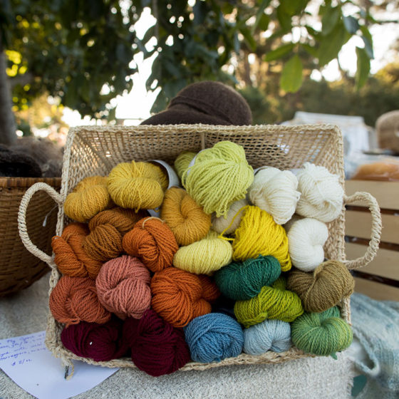 Naturally-dyed yarn, photo by Paige Green